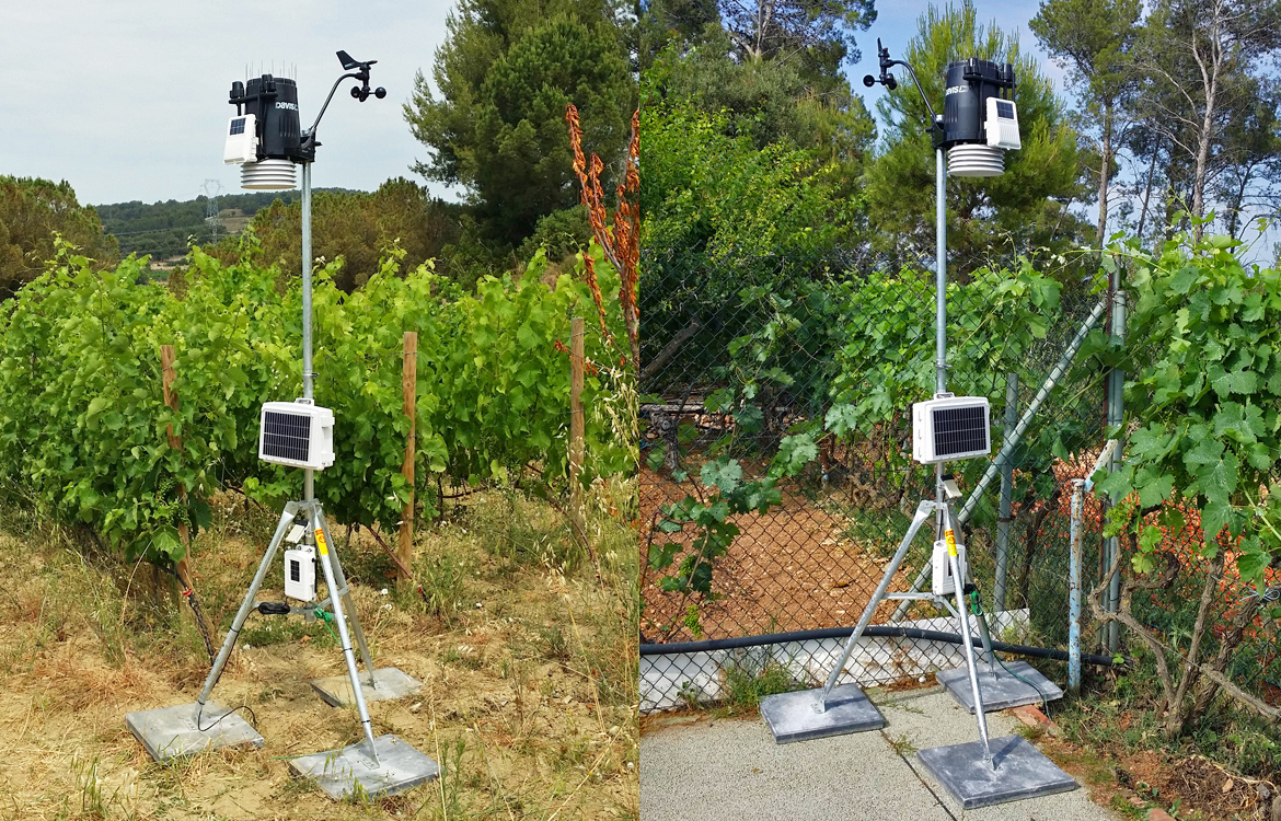 Darrera installs 2 Vantage Pro2™ Plus stations in the Albet i Noya vineyards (Sant Pau d'Ordal, Barcelona)